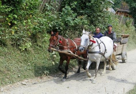 Pferdefuhrwerk_Ukraine